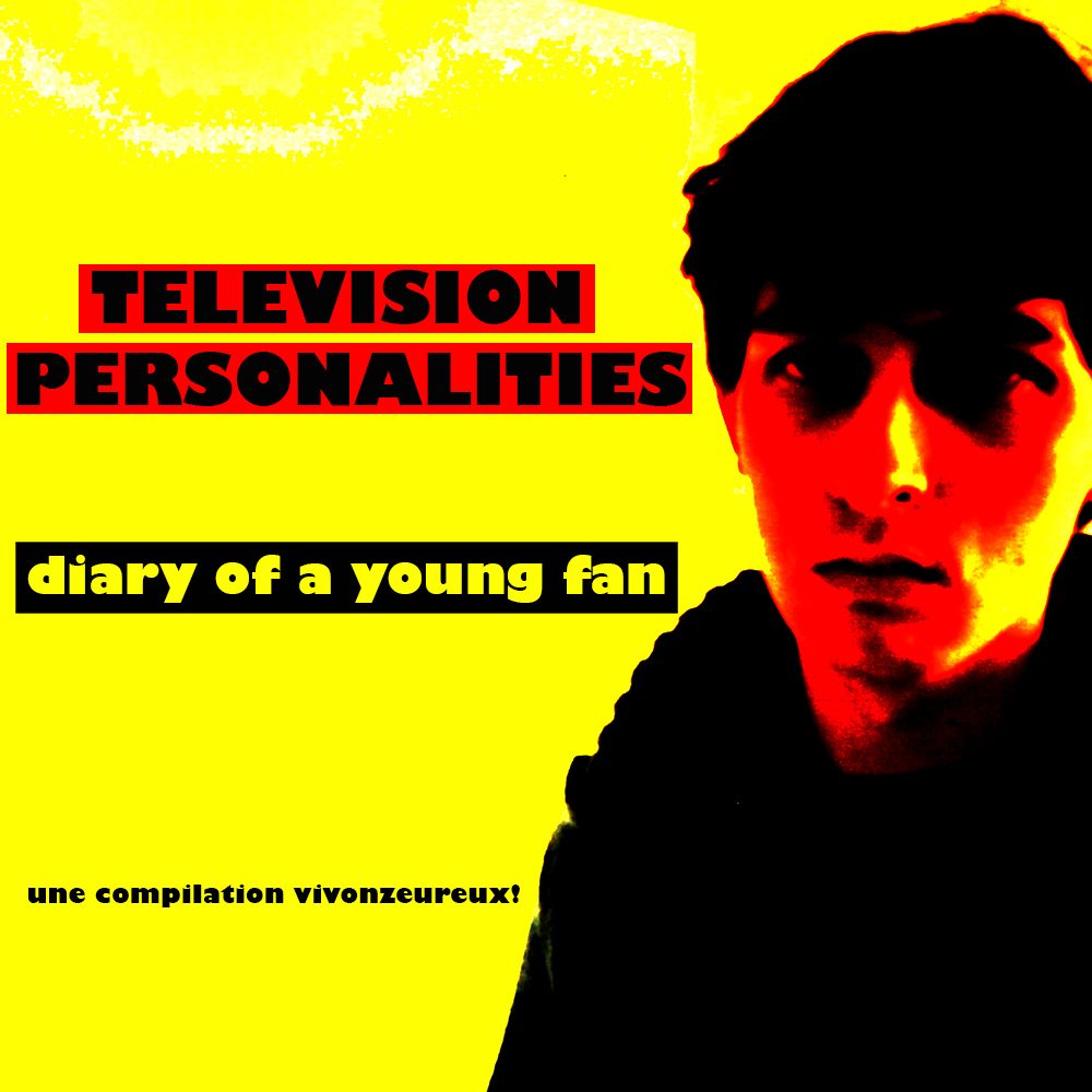 "TELEVISION PERSONALITIES : ""Diary of a young fan, Vivonzeureux! Records, 2017"